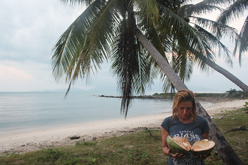 Добыча кокосов